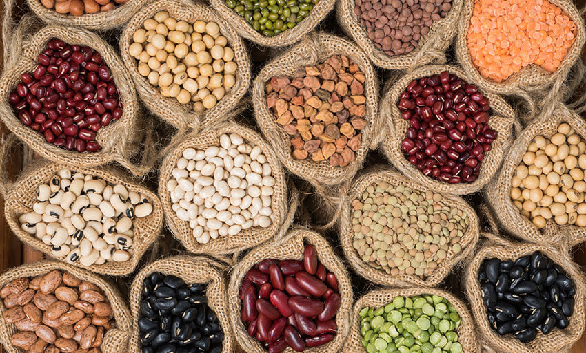 Legumbres: todo lo que debes saber sobre este grupo de alimentos para  cuidar de tu salud | Huercasa | Saborea el Country
