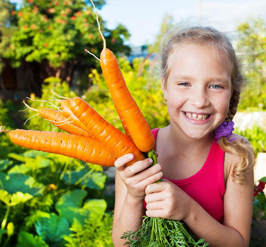 Zanahoria Cocida Como Conseguimos Conservar Todas Sus Propiedades Naturales Y Como Usarla En Tu Cocina Huercasa Saborea El Country Cómo cocinar y preparar la zanahoria. huercasa